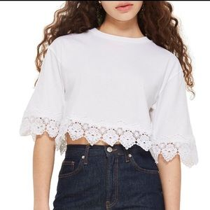 TOPSHOP Crop Top in White Size 12 Large